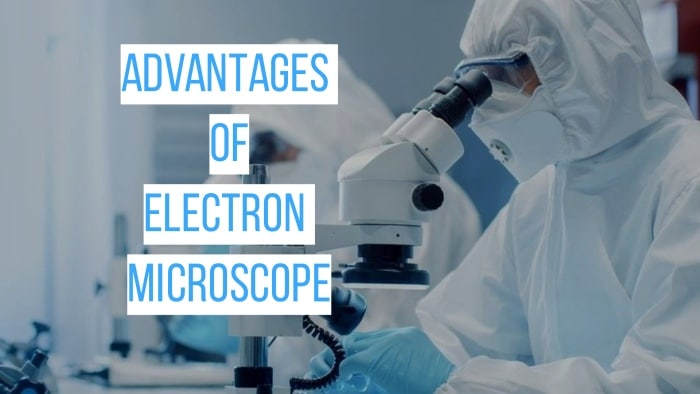 The Pro and Cons of Electron Microscope