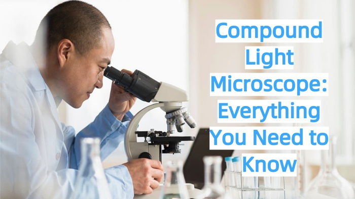 Compound Light Microscope Guide
