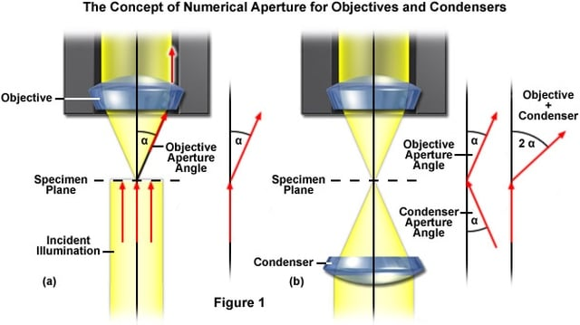 The Concept of Numerical Aperture for Obejectives and Condensers