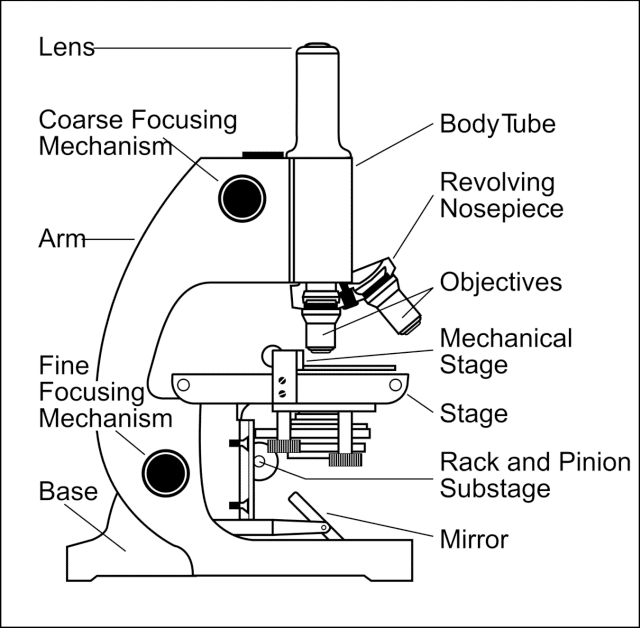 Parts of a simple microscope