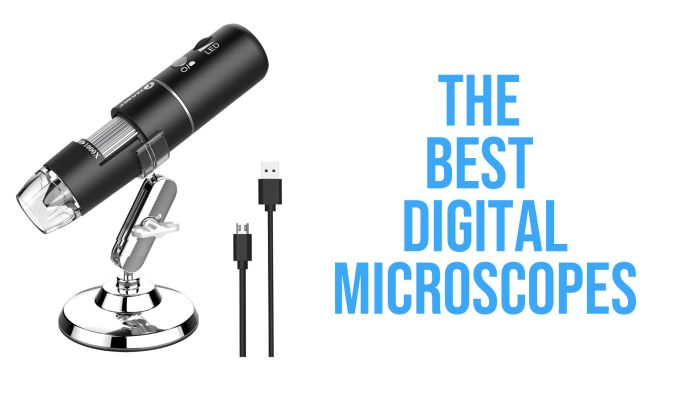 The 8 Best Digital Microscopes: Review And Buying Guide (2020)