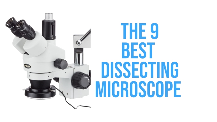Best Dissecting Microscope Review