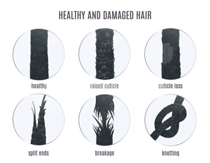 Healthy and damage Hair Under Microscope