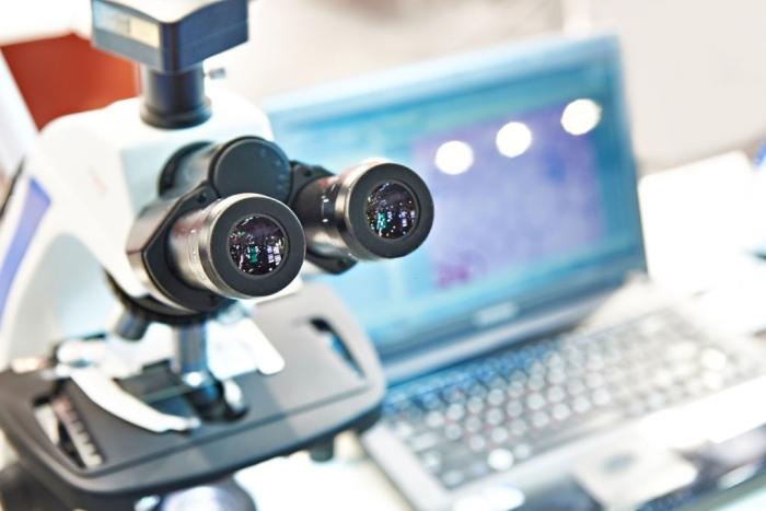 Nikon stereo microscope